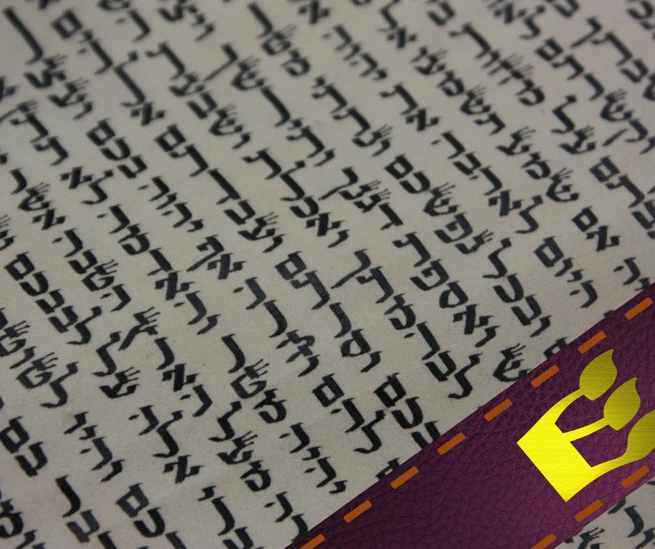 Où est-il écrit dans la Torah que l'on doit fixer des mezouzot aux portes?